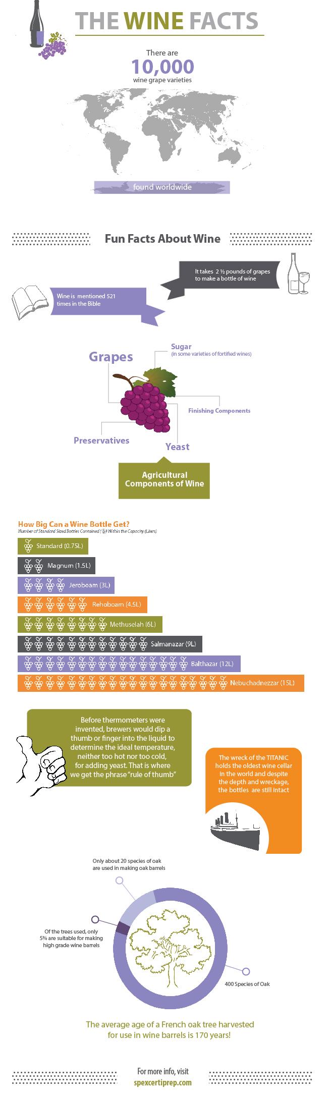 wine-infographic